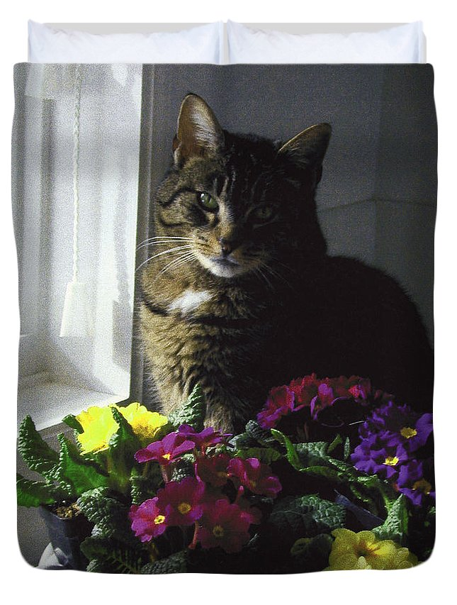 Portrait Duvet Cover featuring the photograph Chat Et Fleurs by Totel Pro