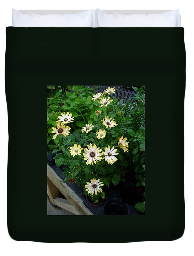 Flowers Duvet Cover featuring the photograph Chatter by Peggy King