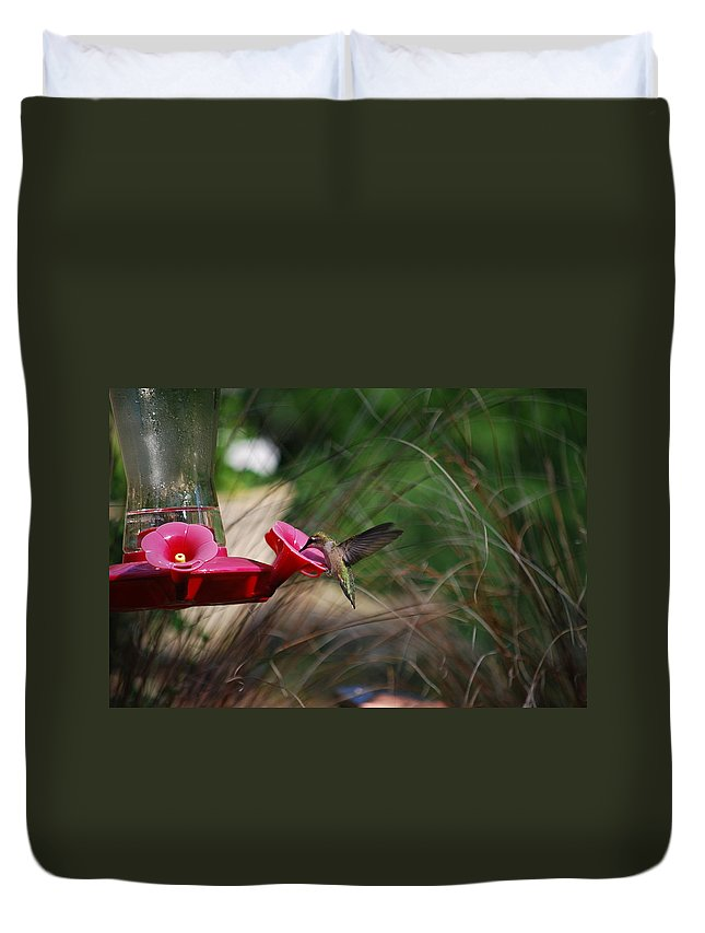 Hummingbird Duvet Cover featuring the photograph Check Out My Wings by Lori Tambakis