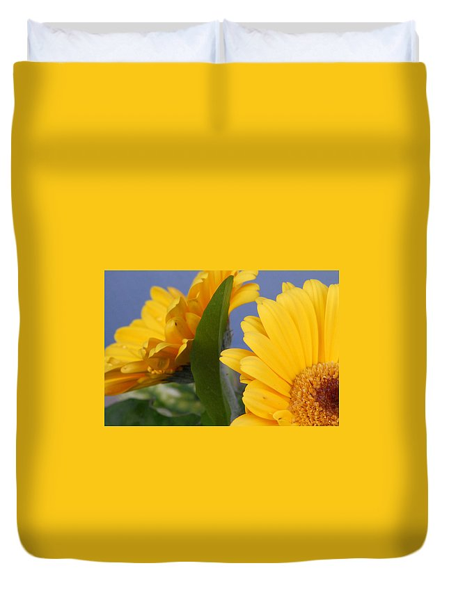 Gerbera Daisy Duvet Cover featuring the photograph Cheerful Gerbera Daisies by Amy Fose