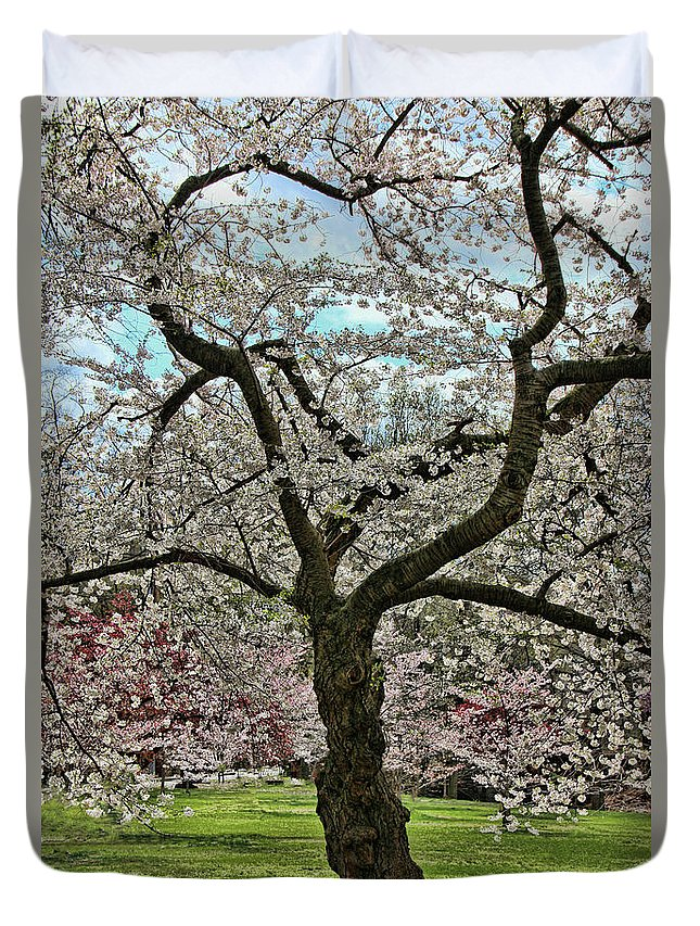 Cherry Blossoms Duvet Cover featuring the photograph Cherry Blossom Trees Of Branch Brook Park 31 by Allen Beatty