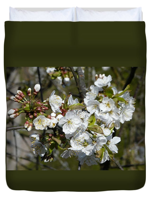 Cherry Duvet Cover featuring the photograph Cherry Blossom by Valerie Ornstein