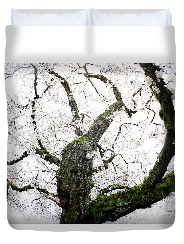 Cherry Blossoms Duvet Cover featuring the photograph Cherry Blossoms by Peter Simmons