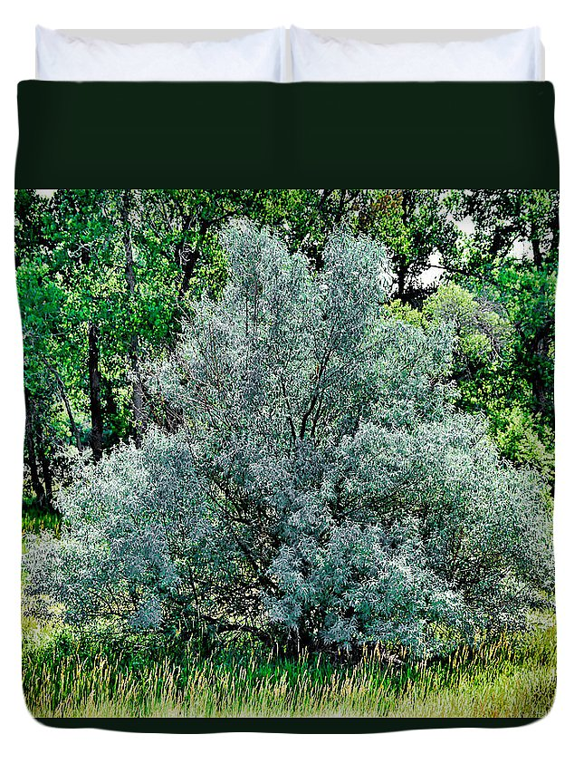 Cherry Creek Duvet Cover featuring the photograph Cherry Creek Trail Study 2 by Robert Meyers-Lussier