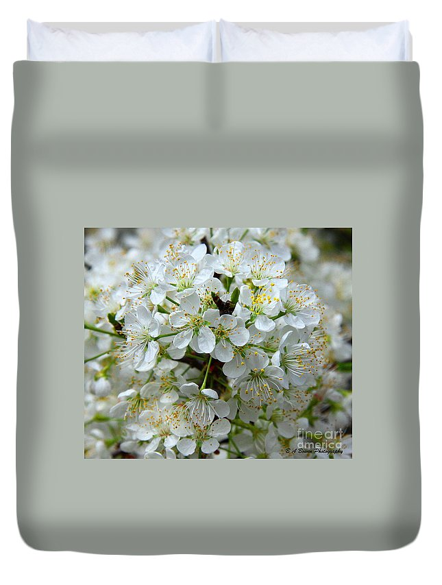 Chickasaw Plum Duvet Cover featuring the photograph Chickasaw Plum Blooms by Barbara Bowen