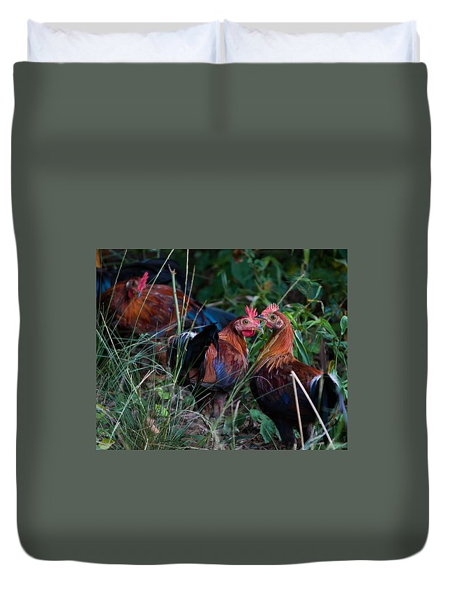 Animals Duvet Cover featuring the photograph Chickens by BF Melton