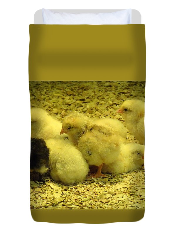 Baby Duvet Cover featuring the photograph Chicks by Laurel Best