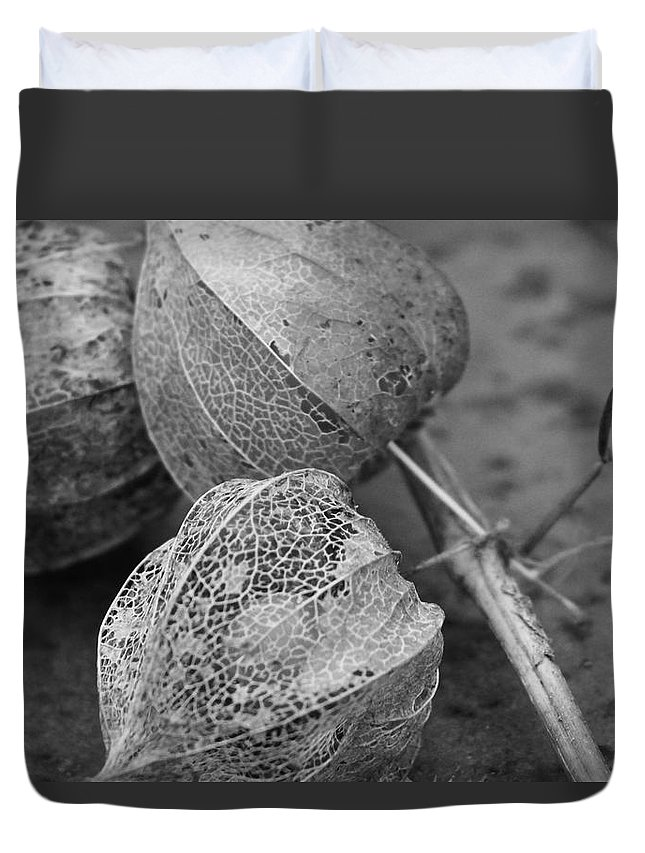 Chinese Lanterns Duvet Cover featuring the photograph Chinese Lanterns In Black And White by Modern Art