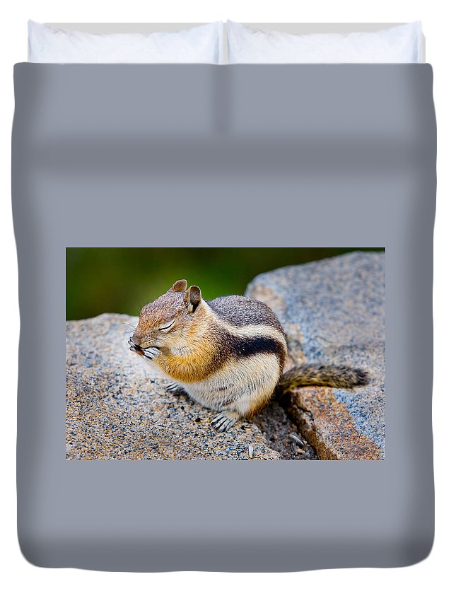 Squirrel Duvet Cover featuring the photograph Chipmunk by James O Thompson