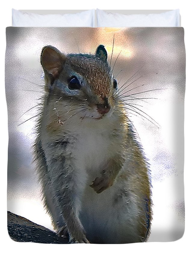 Animal Duvet Cover featuring the photograph Chipmunk Up Close by Amber D Hathaway Photography