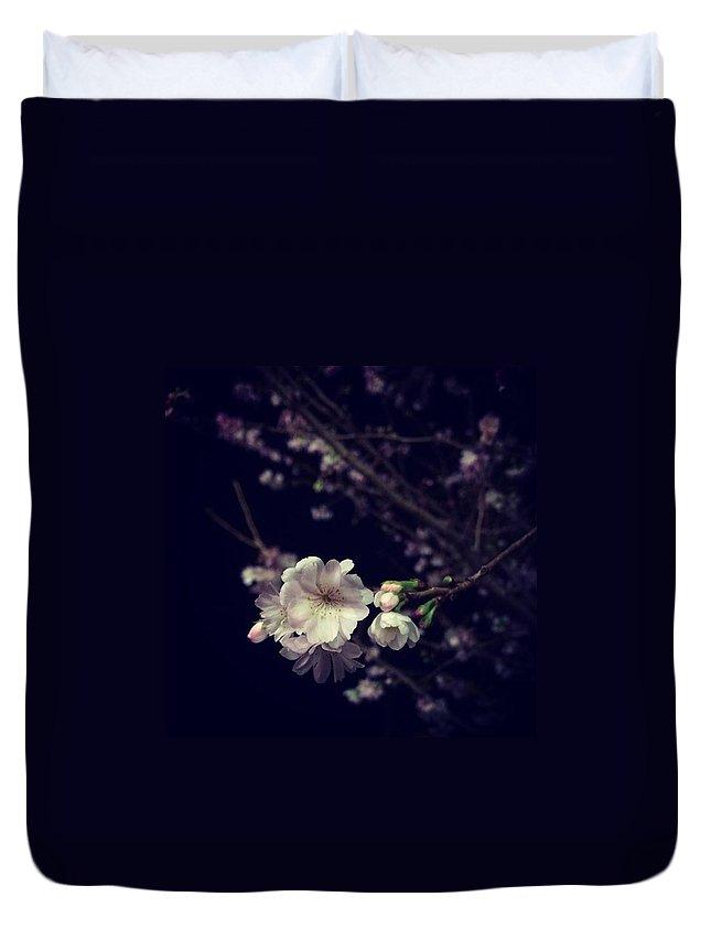 Cherryblossom Duvet Covers