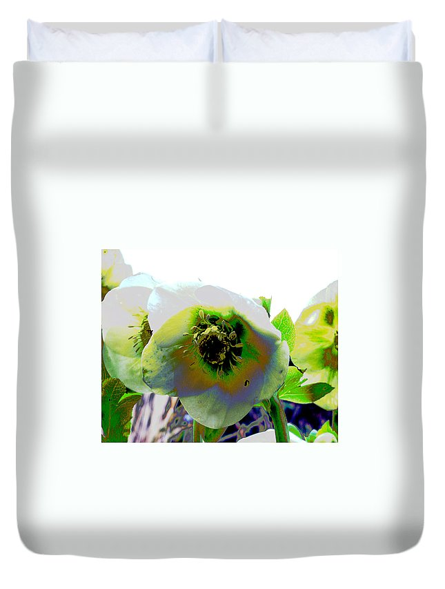 Flora Duvet Cover featuring the photograph Christmas Rose by Susan Baker