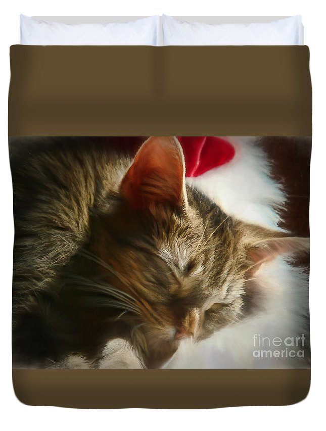 Cat Duvet Cover featuring the photograph Christmas Slumber by Kelley Freel-Ebner