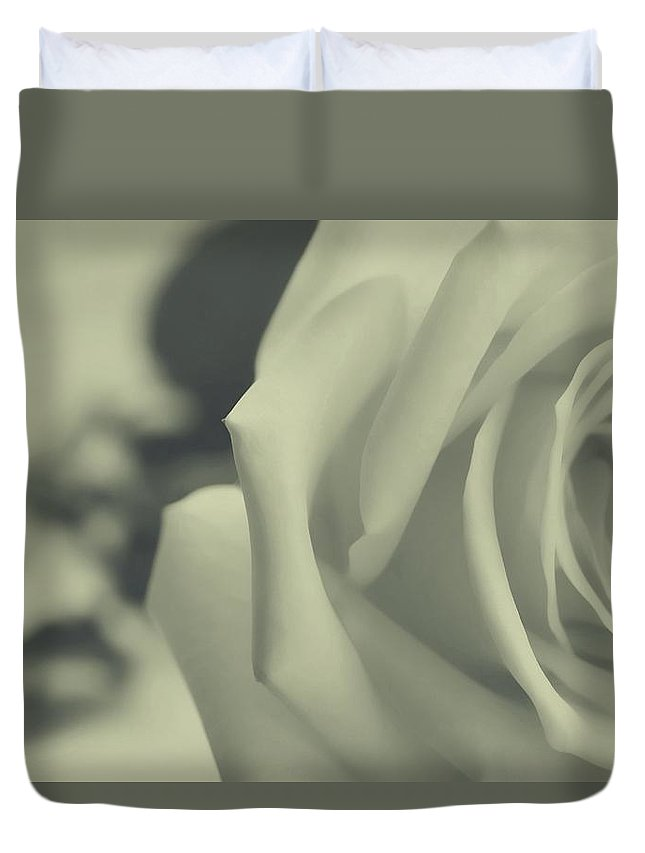 Rose Duvet Cover featuring the photograph Clasica by The Art Of Marilyn Ridoutt-Greene