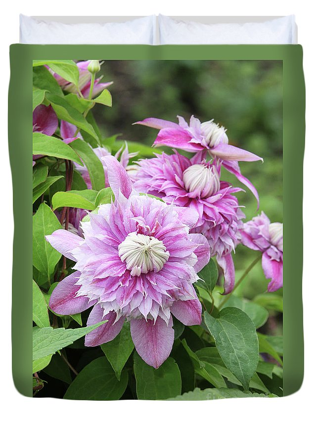 Clematis Duvet Cover featuring the photograph Clematis Josephine #6 by Judy Whitton