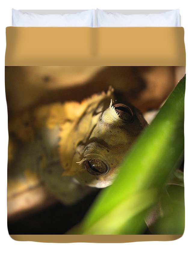 Woodhouse Duvet Cover featuring the photograph Clever Woodhouse by Clyde Dellinger