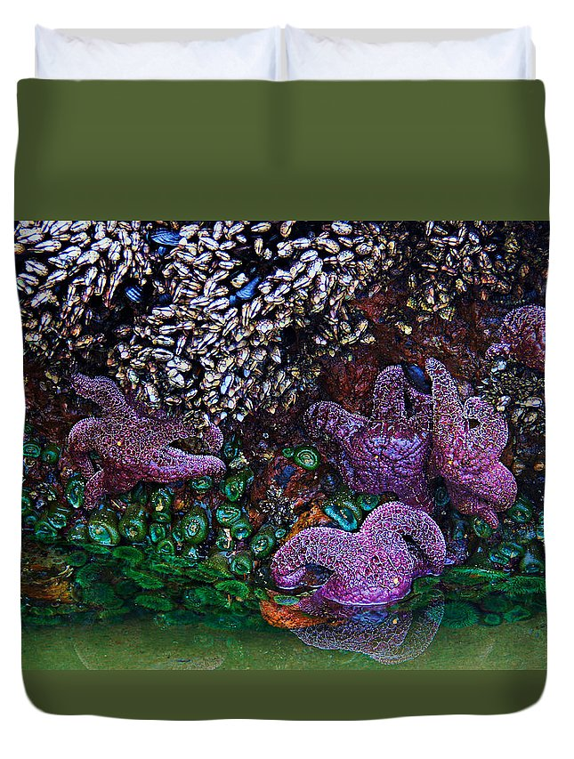 Oregon Duvet Cover featuring the photograph Clinging To Life by Sean Sarsfield