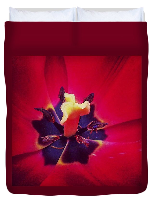 Flowers Duvet Cover featuring the photograph Close With Creation by Katelyn Rose
