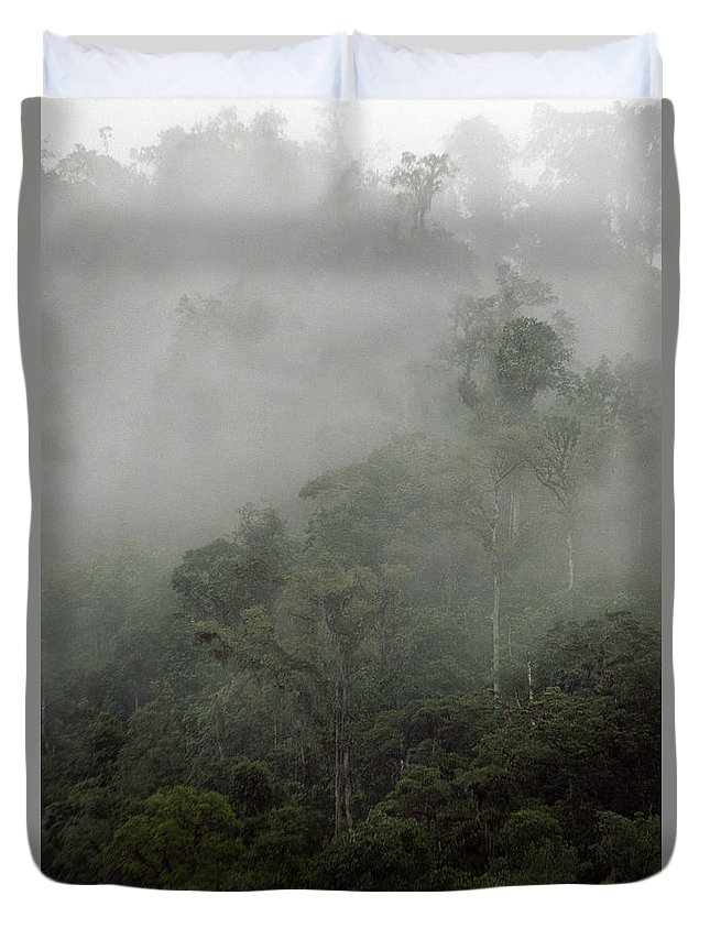 Rainforest Duvet Cover featuring the photograph Cloud Forest by Kathy McClure