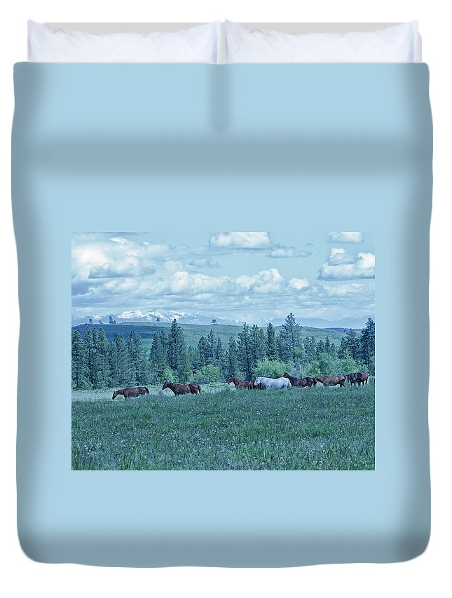 Clouds Duvet Cover featuring the photograph Clouds And Horses by Eleszabeth McNeel