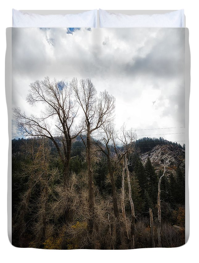 Usa Duvet Cover featuring the photograph Cloudy Sky's Bare Trees by Mitch Johanson