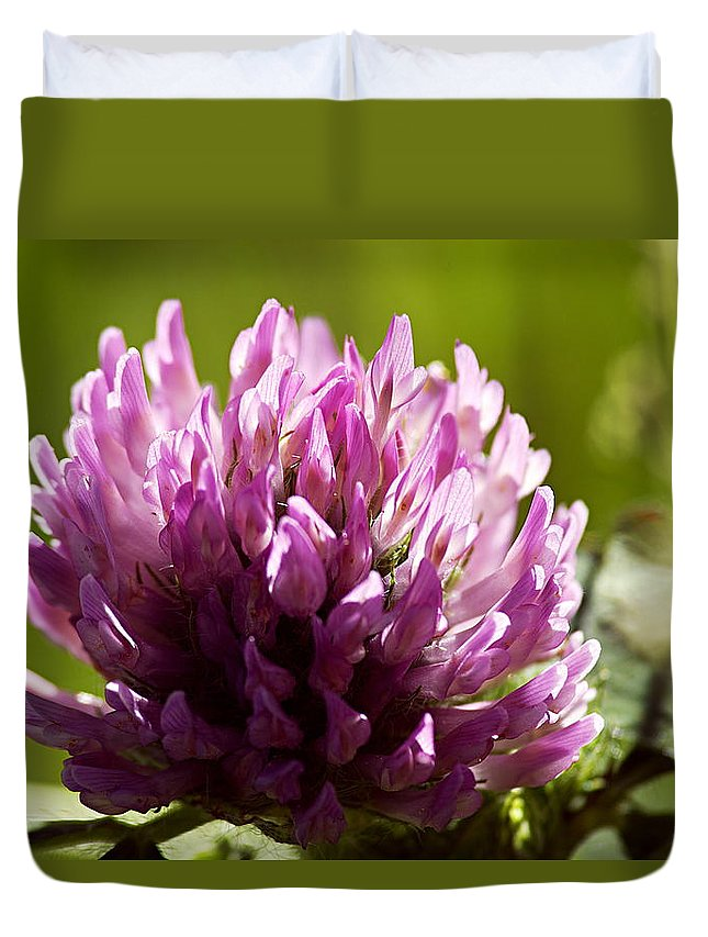 Clover Duvet Cover featuring the photograph Clover Blossom by Larry Ricker