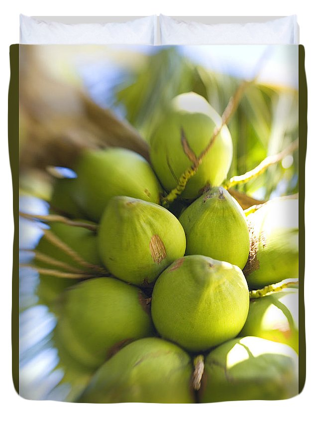 Blur Duvet Cover featuring the photograph Coconut Bunch by Ron Dahlquist - Printscapes