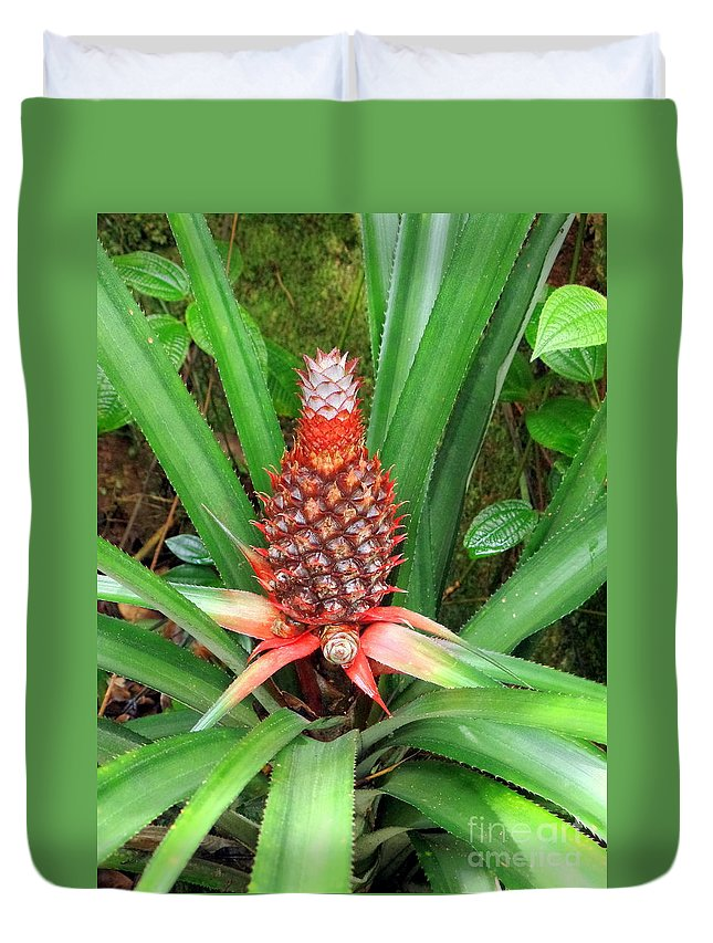 Floral Duvet Cover featuring the photograph Coconut Plant by John Potts