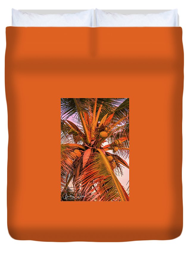 Duvet Cover featuring the photograph Coconut Sunset by Brittney Robles