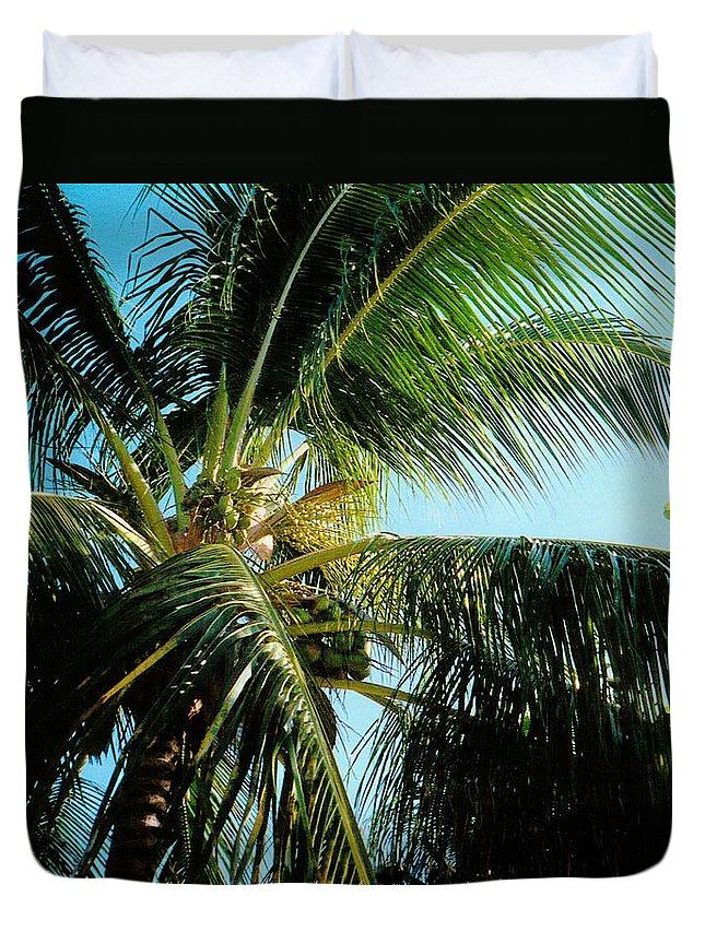 Jamaica Duvet Cover featuring the photograph Coconut Tree by Debbie Levene