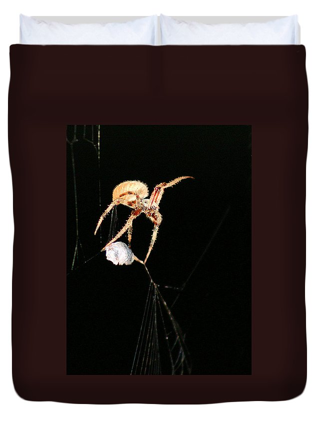 Spider Duvet Cover featuring the photograph Cocooning The Victim by Kristin Elmquist