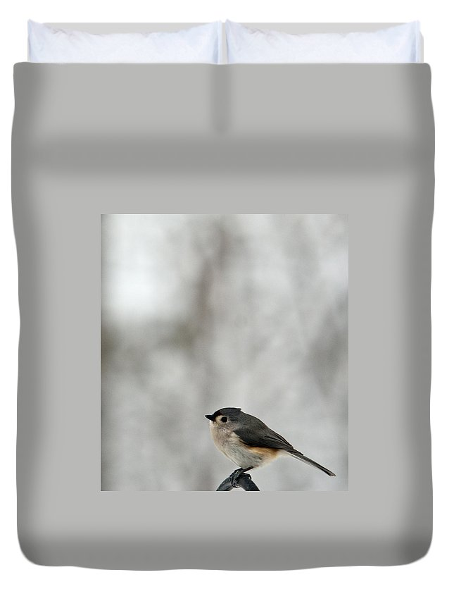 Cold Duvet Cover featuring the photograph Cold Titmouse by Douglas Barnett