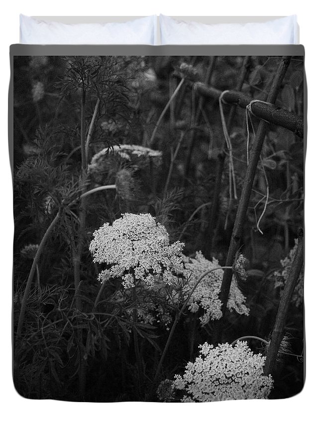 Queen Anne's Lace Duvet Cover featuring the photograph Colonial Garden At Twilight by Rachel Morrison