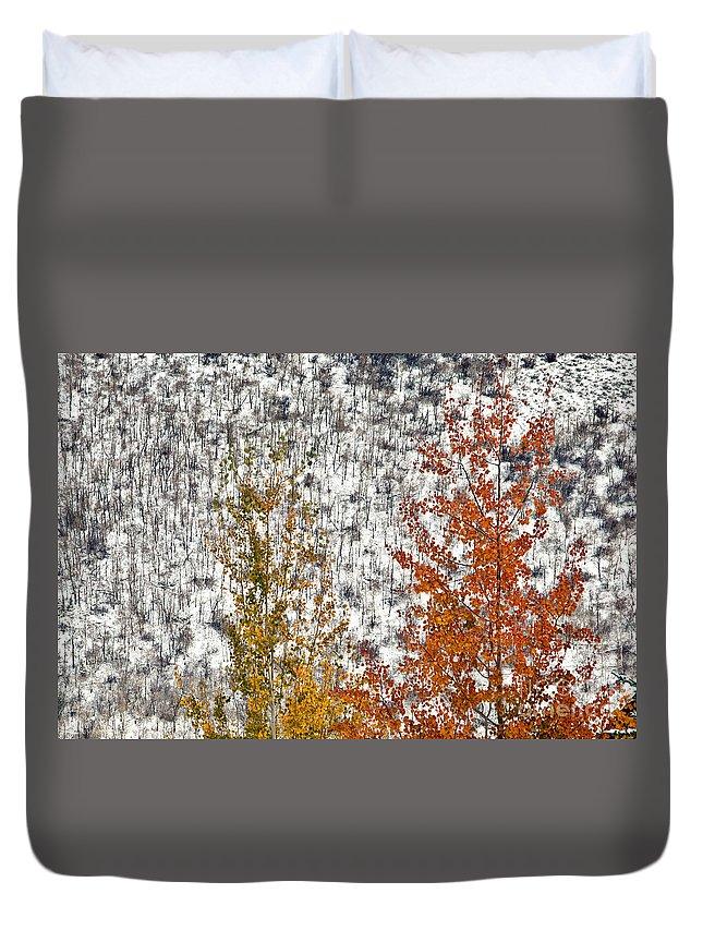 Fall Duvet Cover featuring the photograph Colorado by Bernd Billmayer