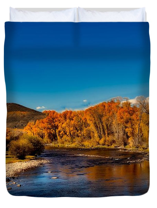 Sky Duvet Cover featuring the photograph Colorado Cottonwoods In Autumn by Mountain Dreams