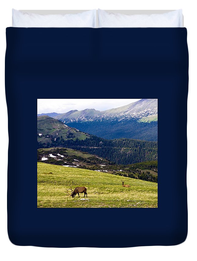 Americana Duvet Cover featuring the photograph Colorado Elk by Marilyn Hunt