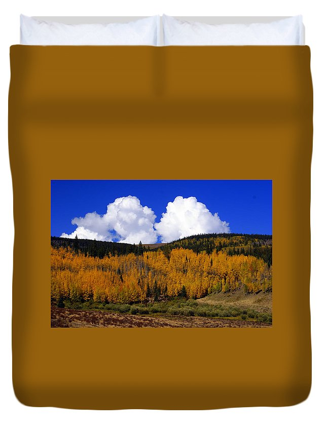 Fall Colors Duvet Cover featuring the photograph Colorado Fall 2 by Marty Koch