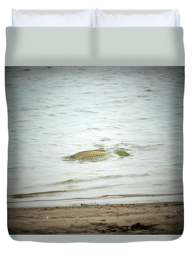 Fish Duvet Cover featuring the photograph Colorado Net Fishing by Louise Browne