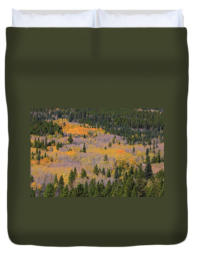 Autumn Duvet Cover featuring the photograph Colorado Rocky Mountains Autumn Colors by James BO Insogna