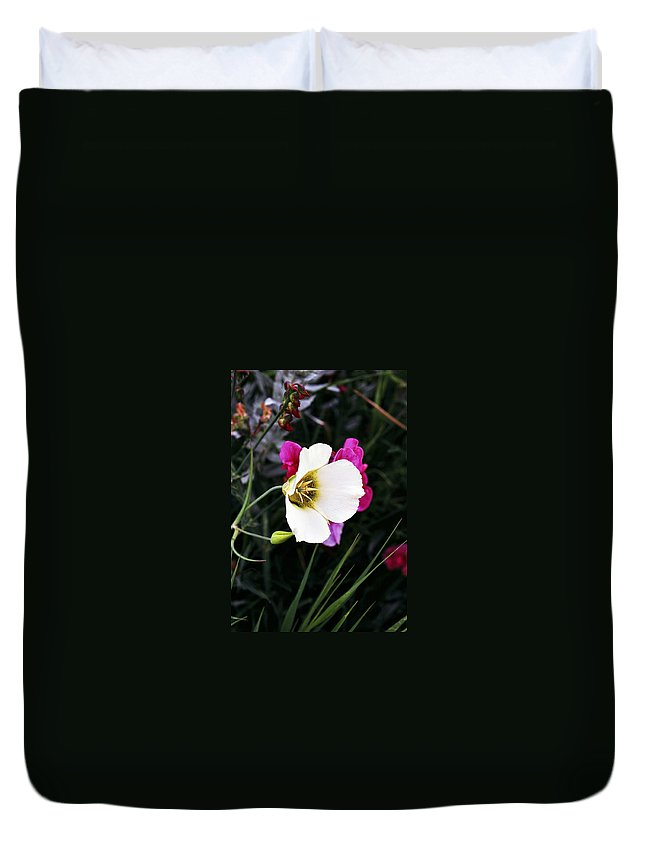 Wildflower Duvet Cover featuring the photograph Colorado Wildflower 2 by Marilyn Hunt