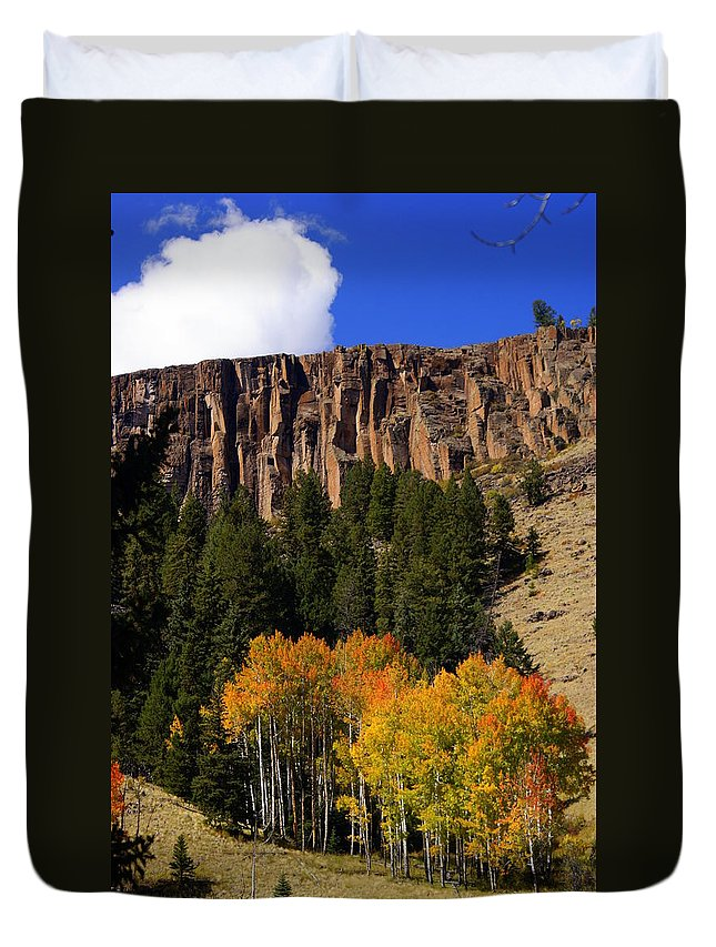 Fall Colors Duvet Cover featuring the photograph Colorful Canyon by Marty Koch