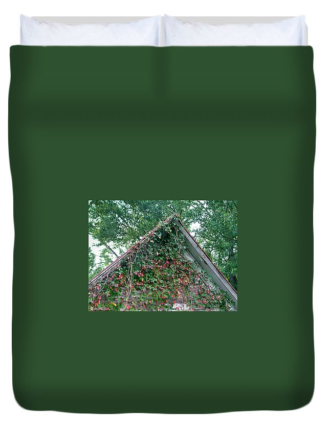 Gable Duvet Cover featuring the photograph Colorful Gable by Douglas Barnett
