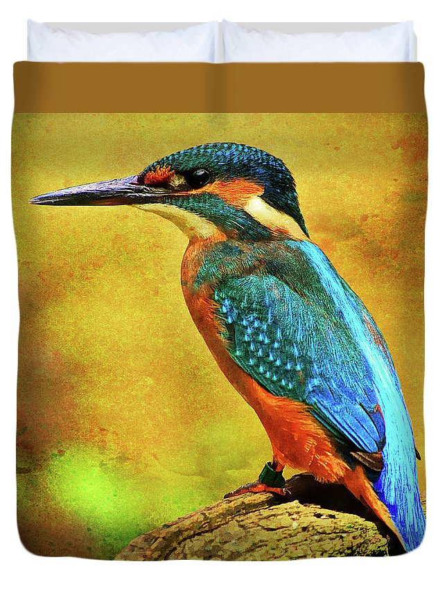 Alcedines Duvet Cover featuring the photograph Colorful Kingfisher by Roy Pedersen