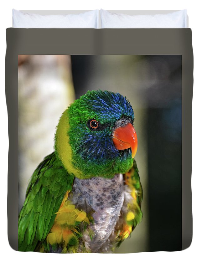 Lorikeet Duvet Cover featuring the photograph Colorful Lorikeet by Artful Imagery