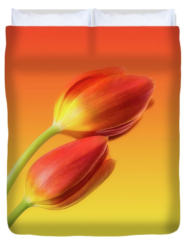 Tulips Duvet Cover featuring the photograph Colorful Tulips by Wim Lanclus