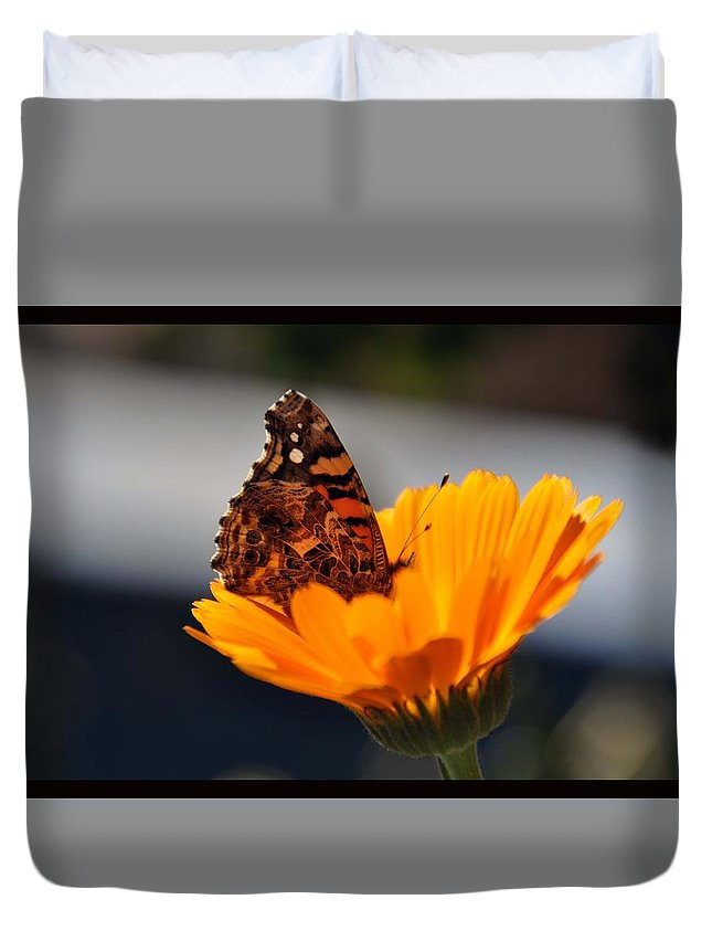 View Flower Colors Duvet Cover featuring the photograph Colorful View by Stefan Pettersson