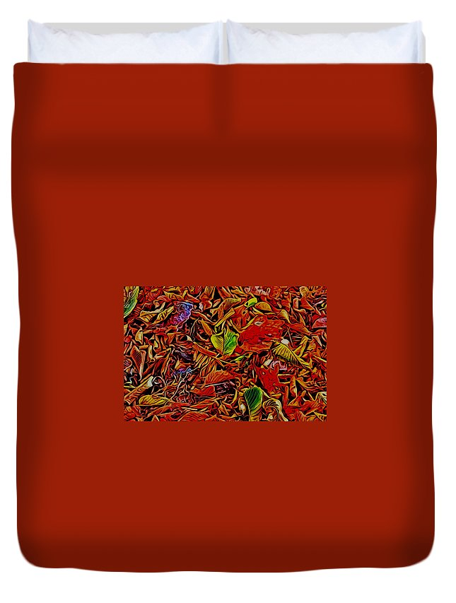 James Smullins Duvet Cover featuring the photograph Colors Of Fall by James Smullins