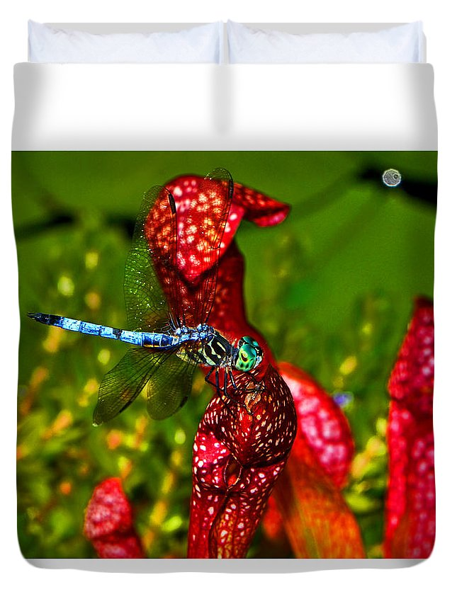 Pitcher Plant Duvet Cover featuring the photograph Colors Of Nature - Profile Of A Dragonfly 003 by George Bostian