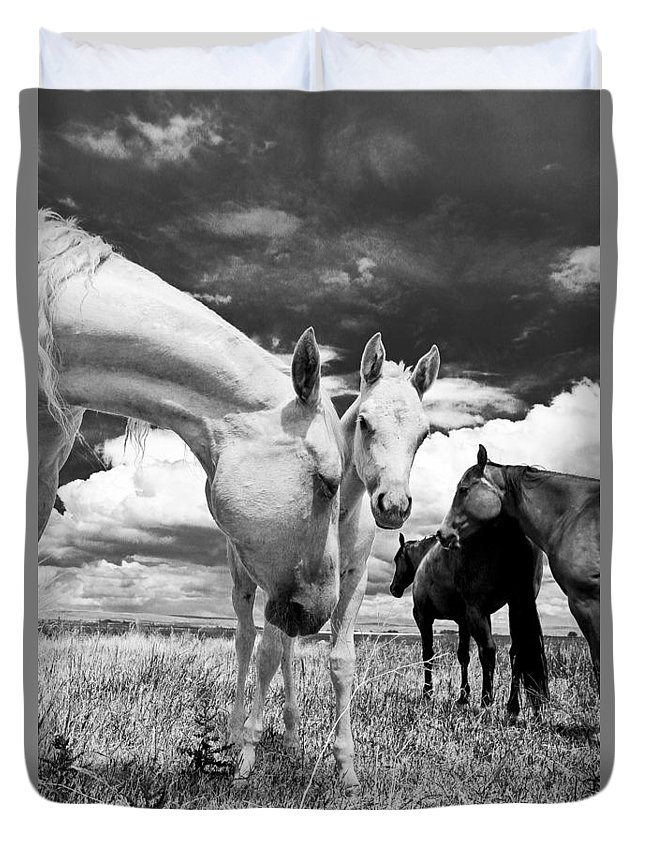 Joseph Duvet Cover featuring the photograph Colt 006 by Charles Frates