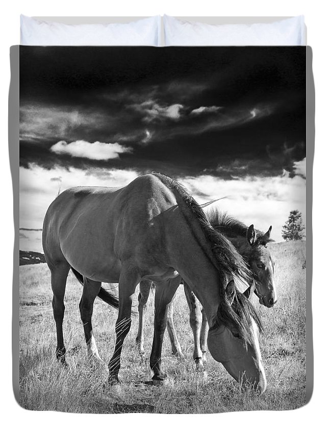 Joseph Duvet Cover featuring the photograph Colt 013 by Charles Frates